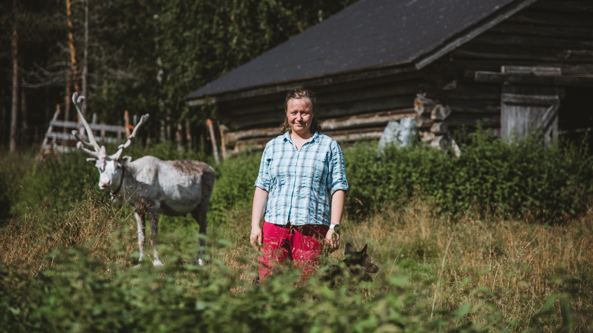 Year of reindeer Miia Merkku Visit Rovaniemi sustainable Rovaniemi blog series