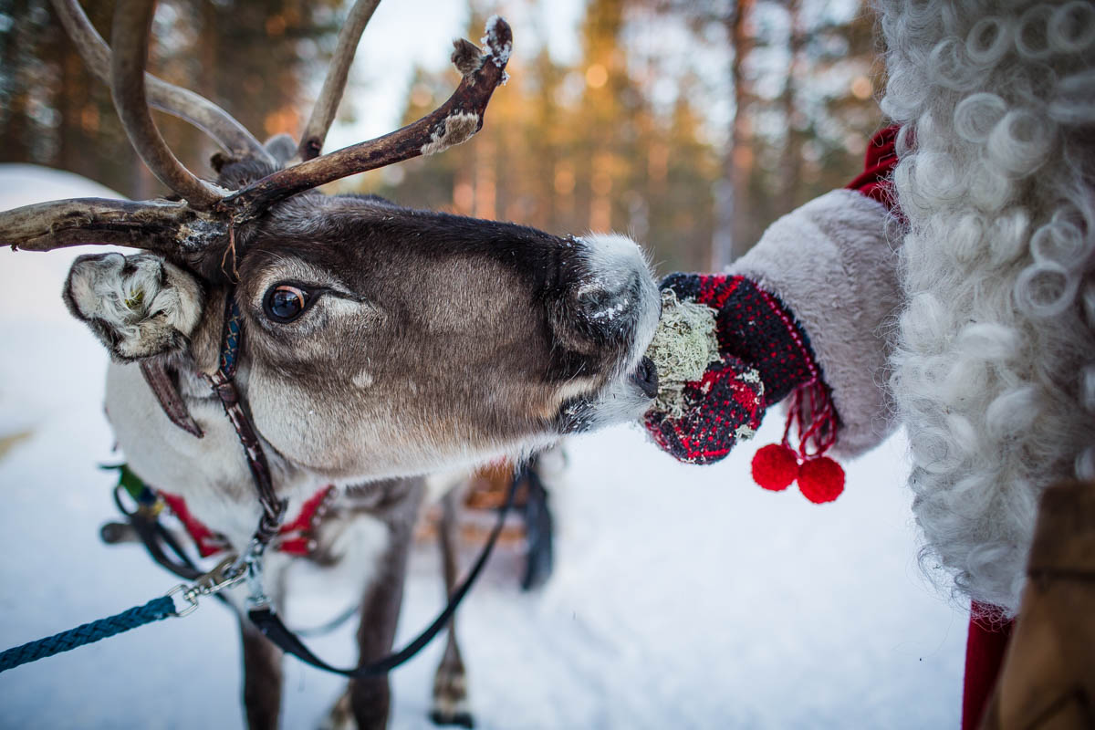 A Piece of Finnish Language for Your Trip to Rovaniemi