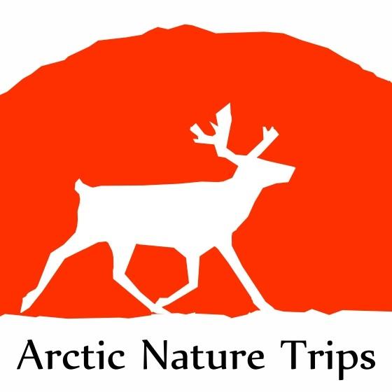 Arctic Nature Trips in Rovaniemi, Lapland, Finland