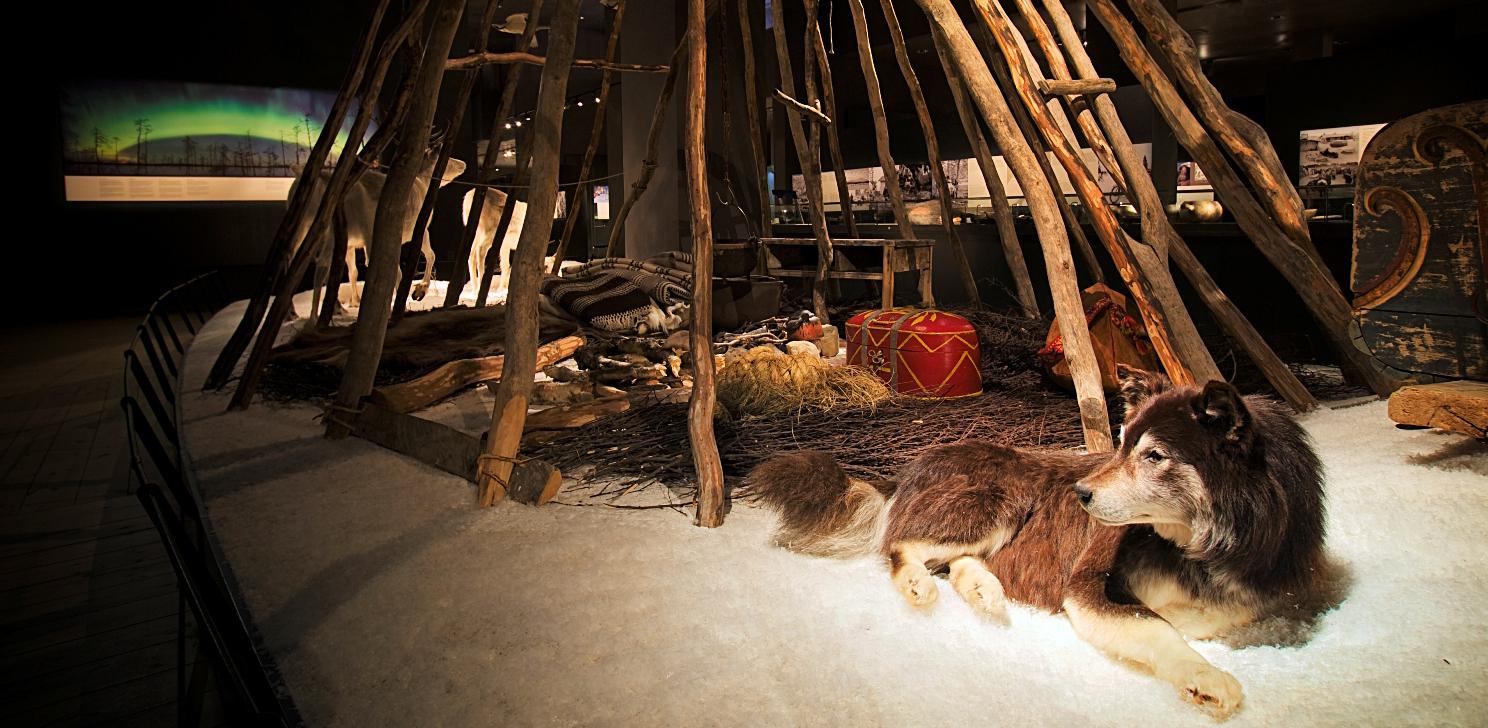 Exhibition in Arktikum Museum in Rovaniemi Lapland Finland