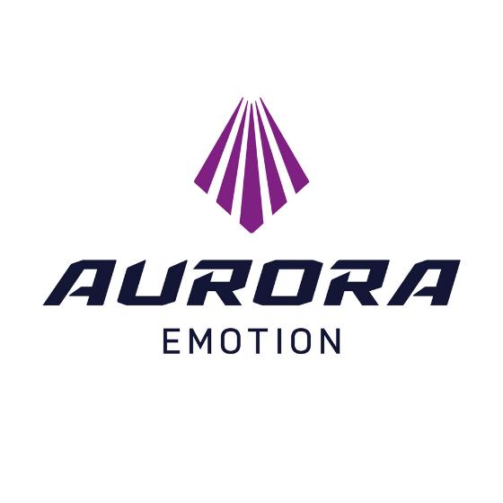 Aurora eMotion in Rovaniemi Lapland Finland
