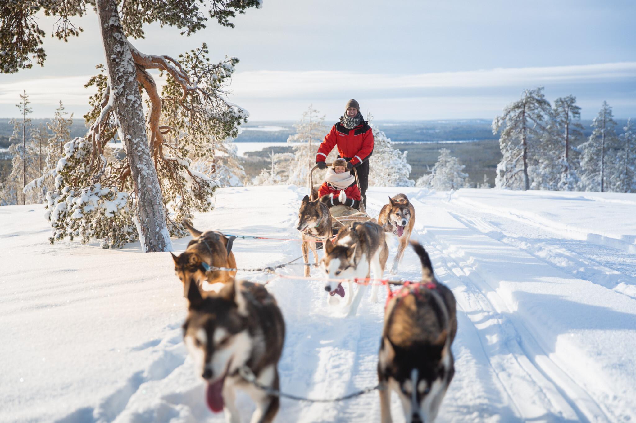 Changed By Rovaniemi Winter Husky ride Rovaniemi Lapland Finland