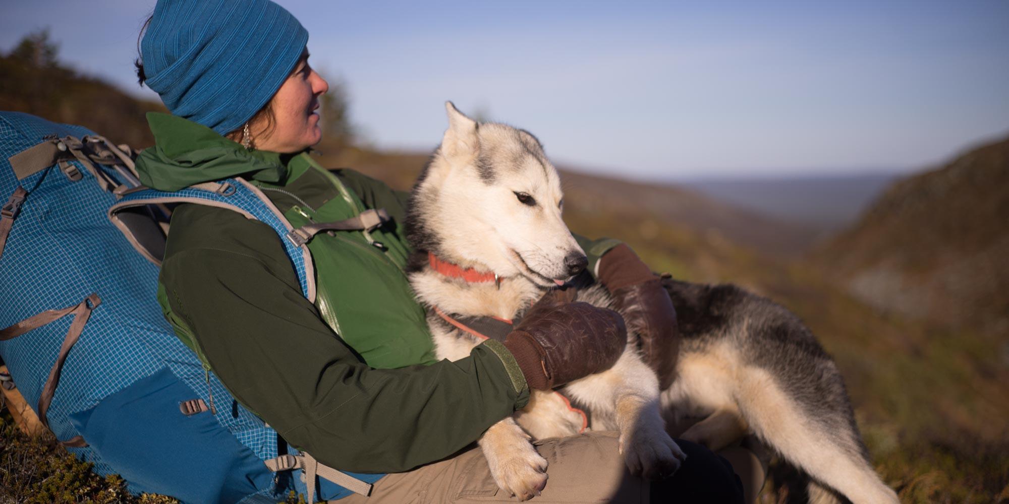Husky Hike with Husky and Yoga Nature, Rovaniemi, Lapland, Finland