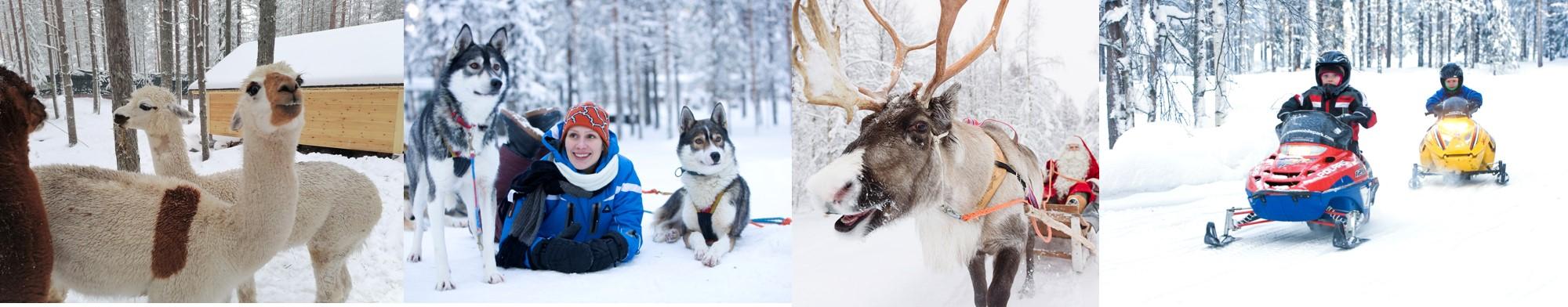 Joulupukin Pajakyla Santa Claus Village aktiviteetit