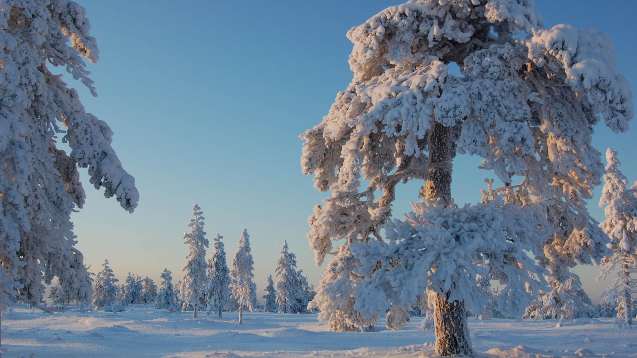 Kayrastunturi talvella, Rovaniemi. Kuva Rovaniemen kaupunki