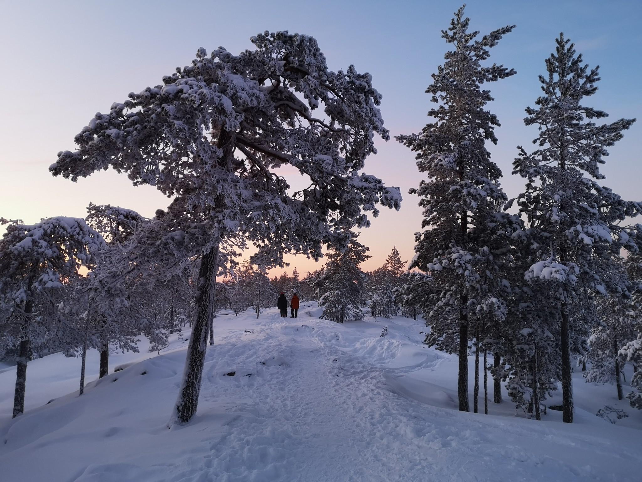 Kohteenanaailma Talviloma Rovaniemellä - Lappi alkaa Ounasvaaralta (1)