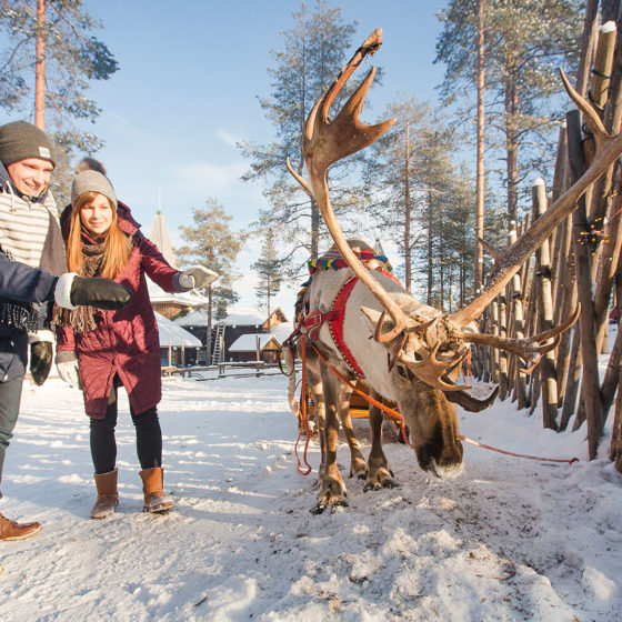 A couple meeting a reindeer in Santa Claus Village in Rovaniemi, Lapland, Finland