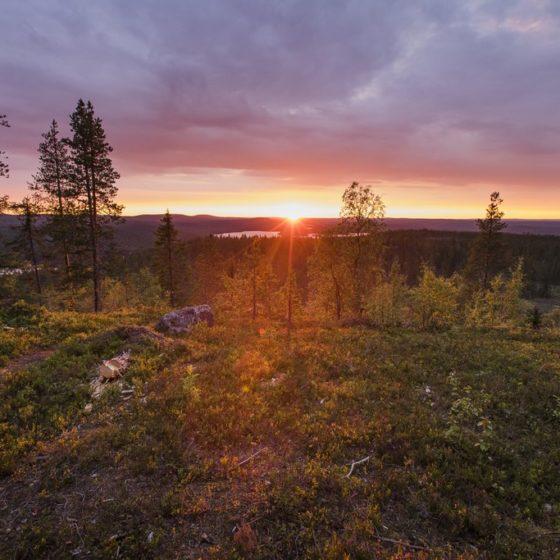 Midnight sun on top of Ounasvaara hill in Rovaniemi Lapland Finland