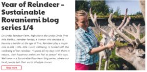 Sustainable Rovaniemi blog series Miia Merkku Year of reindeer