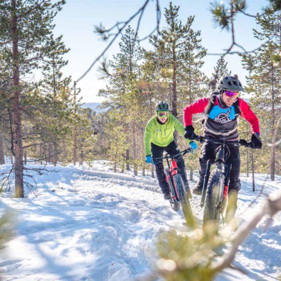 Ounasvaara Fatbike Trails Rolloutdoors Lapoland Finland Visit Rovaniemi