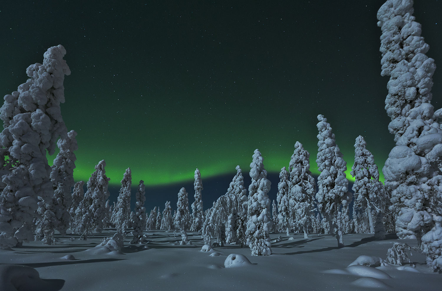 Northern Lights in Rovaniemi Lapland Finland