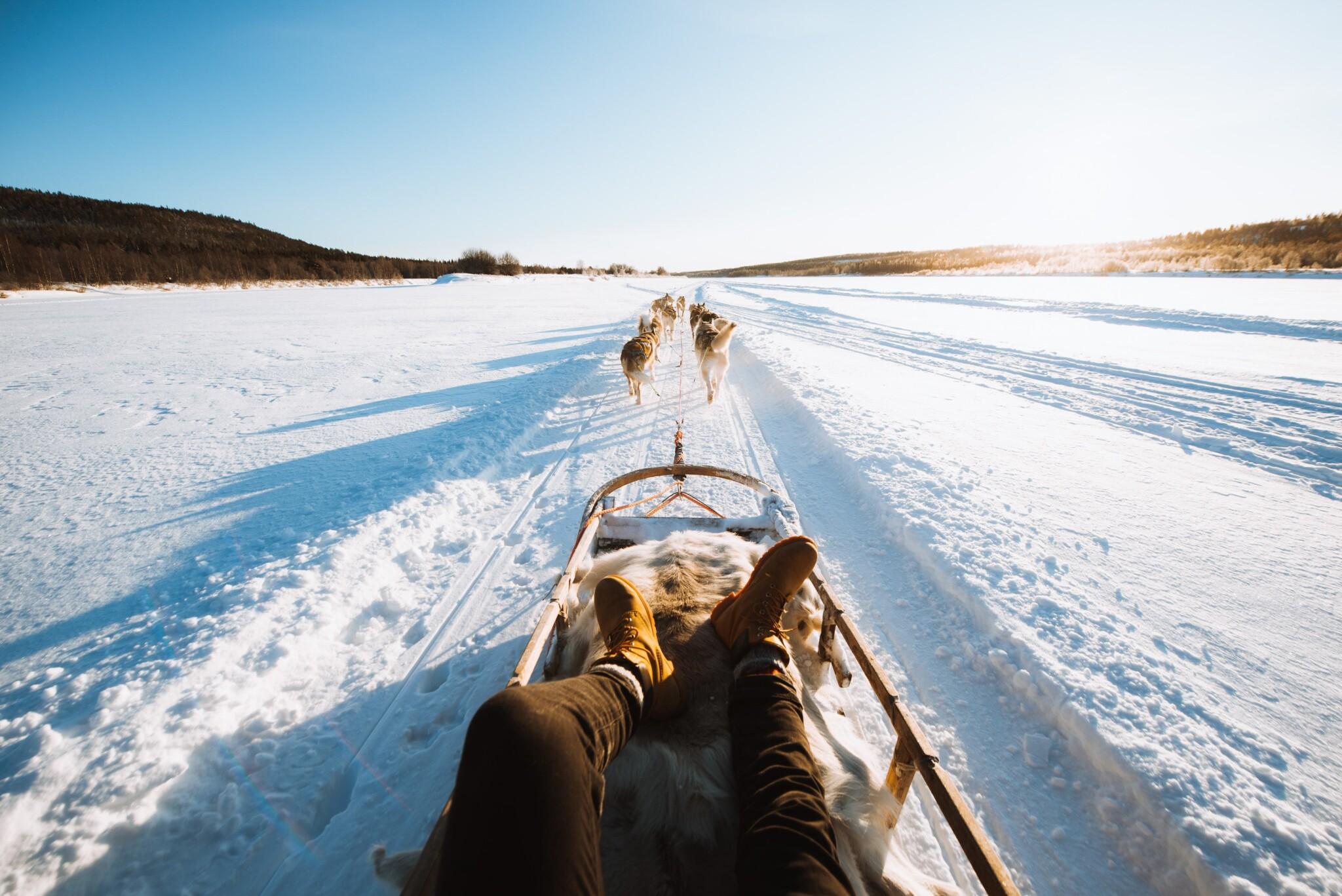 Shaman Huskies in Rovaniemi Lapland Finland (1)