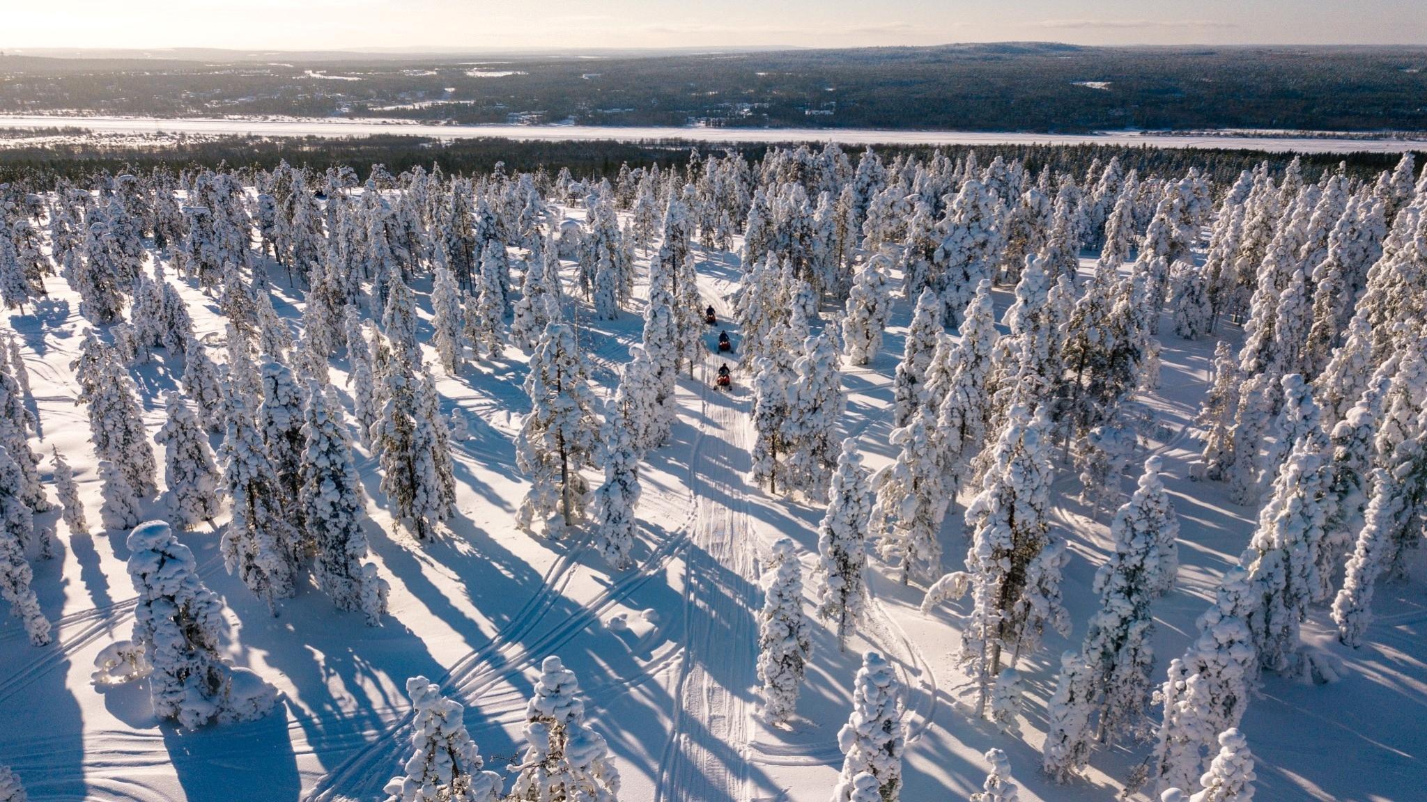 Snowmobiling through winter Forest in Rovaniemi, Lapland, Finland