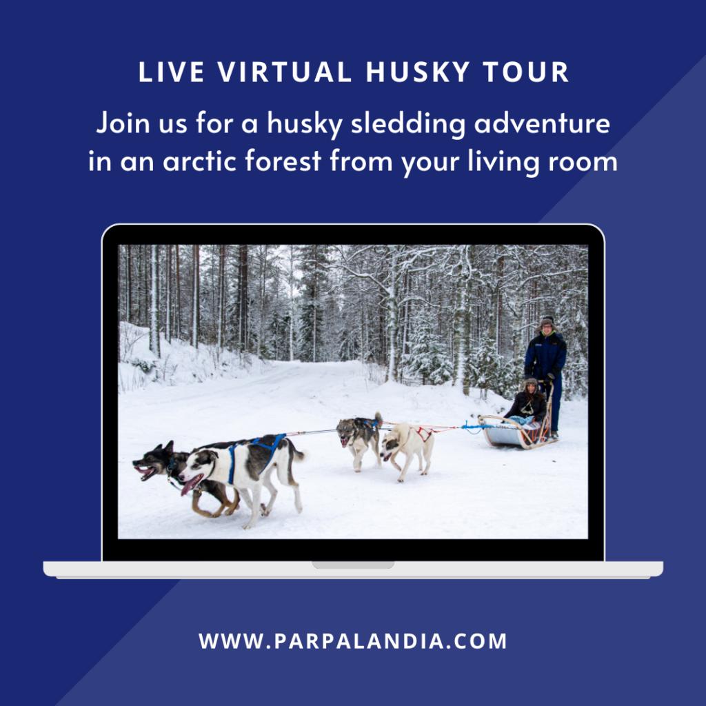 Virtual Husky Tour Parpalandia in Rovaniemi Lapland Finland