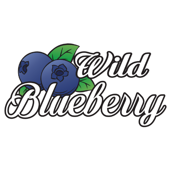 Wild Blueberry activity company in Rovaniemi Lapland Finland