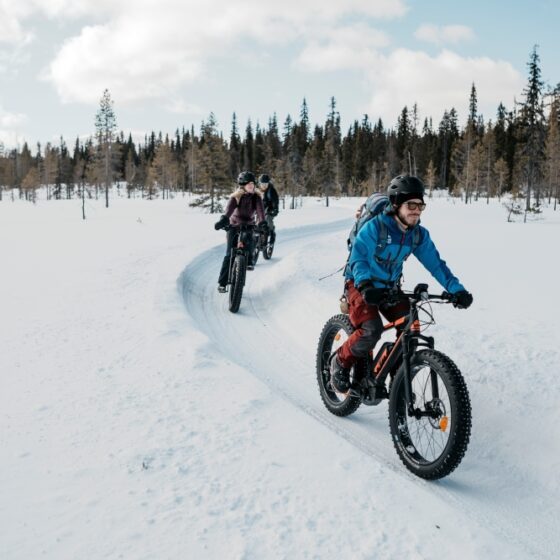Winter biking_Lapland Safaris_Rovaniemi