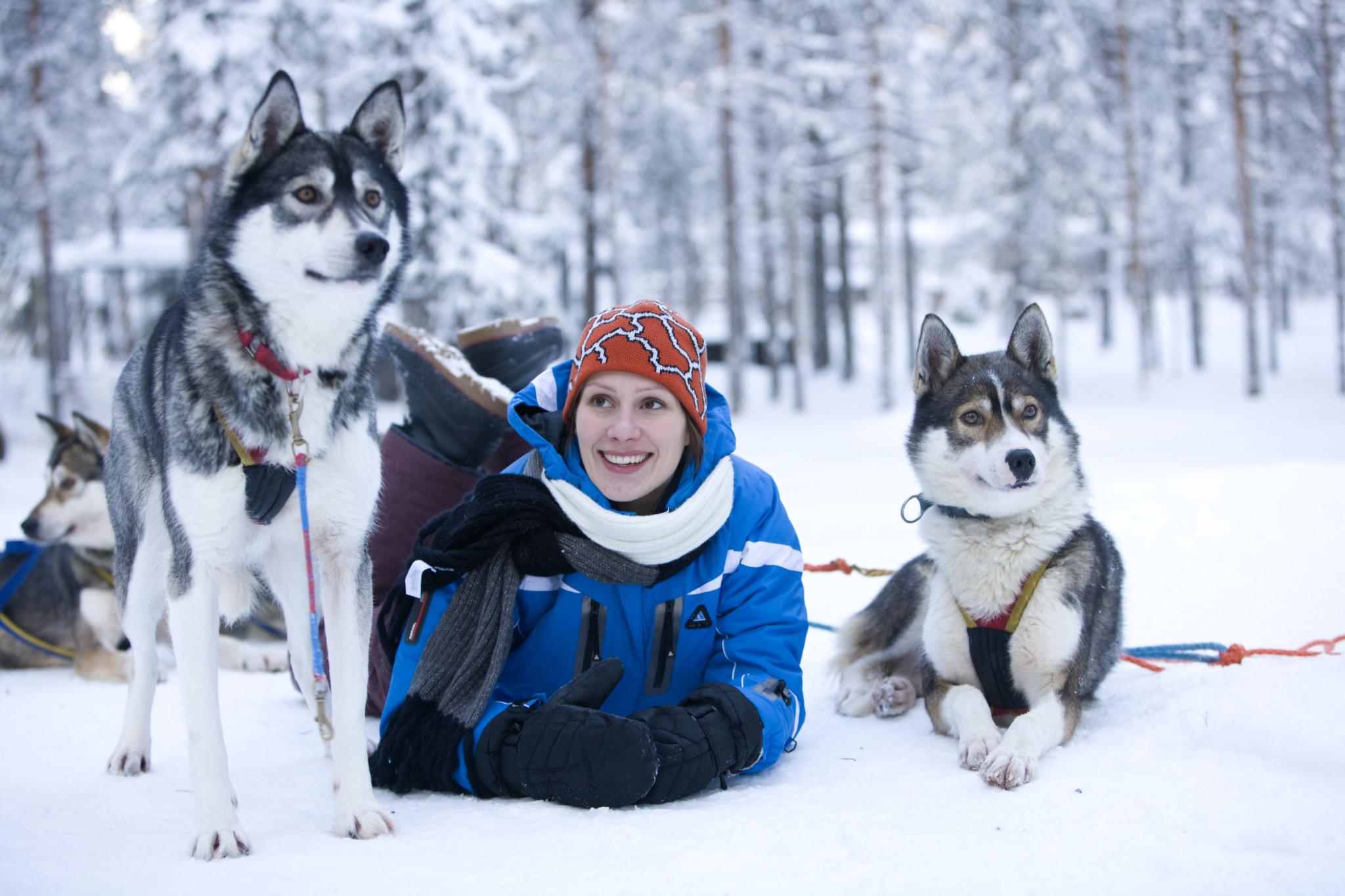 Husky Safaris By Arctic Circle Husky Park Visit Rovaniemi