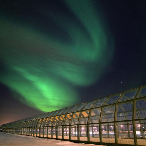 Northern Lights in Rovaniemi, Lapland, Finland