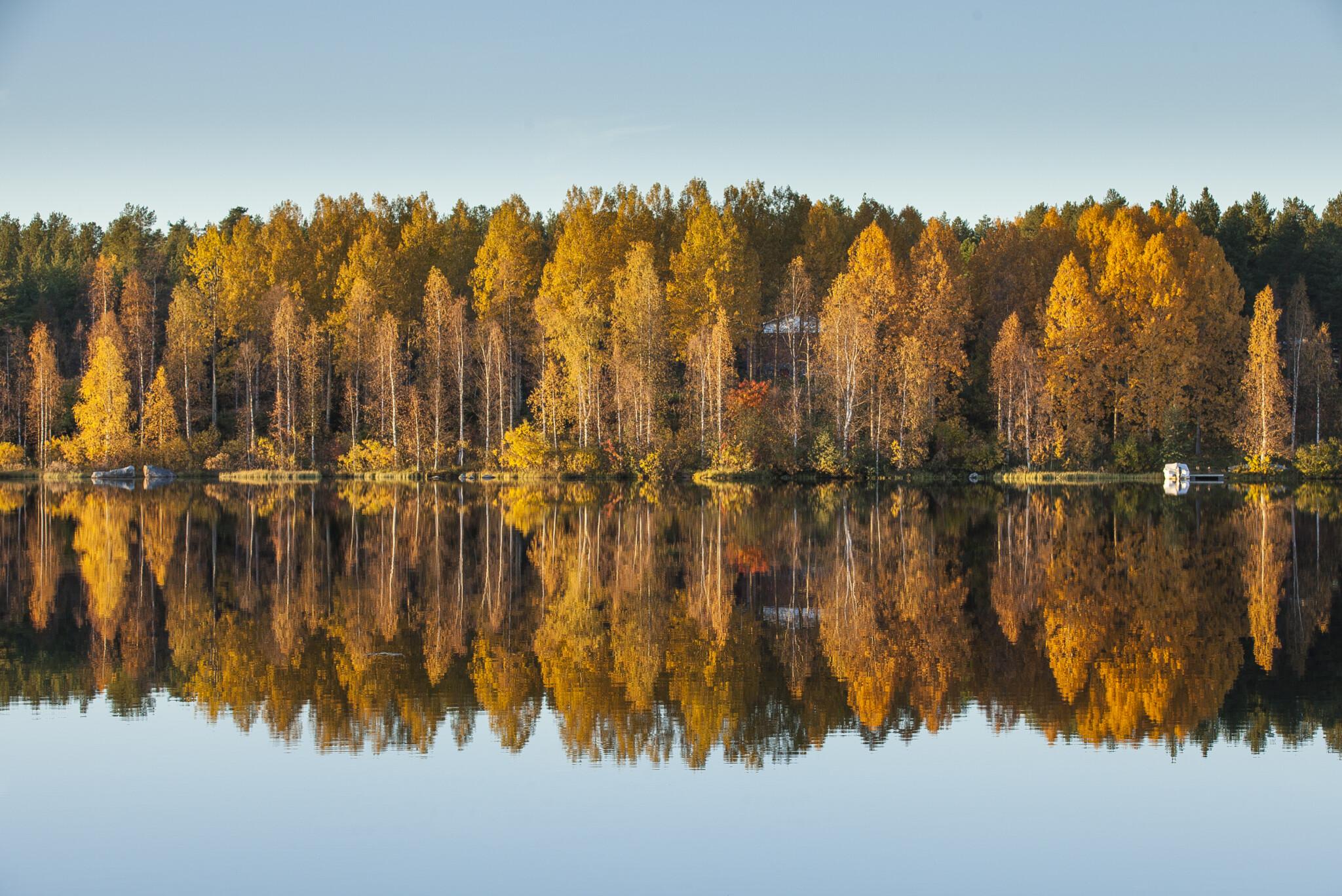 autumn-colours-reflection-Rovaniemi-Lapland-Finland-photo-Alexander-Kuznetsov