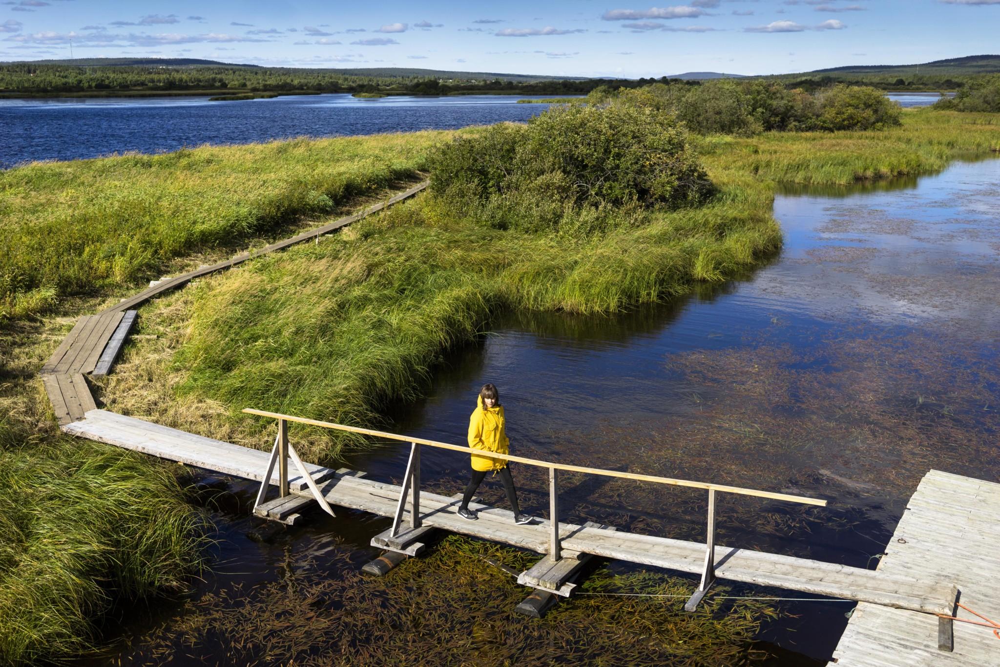 Koivusaaren luontopolku Rovaniemi