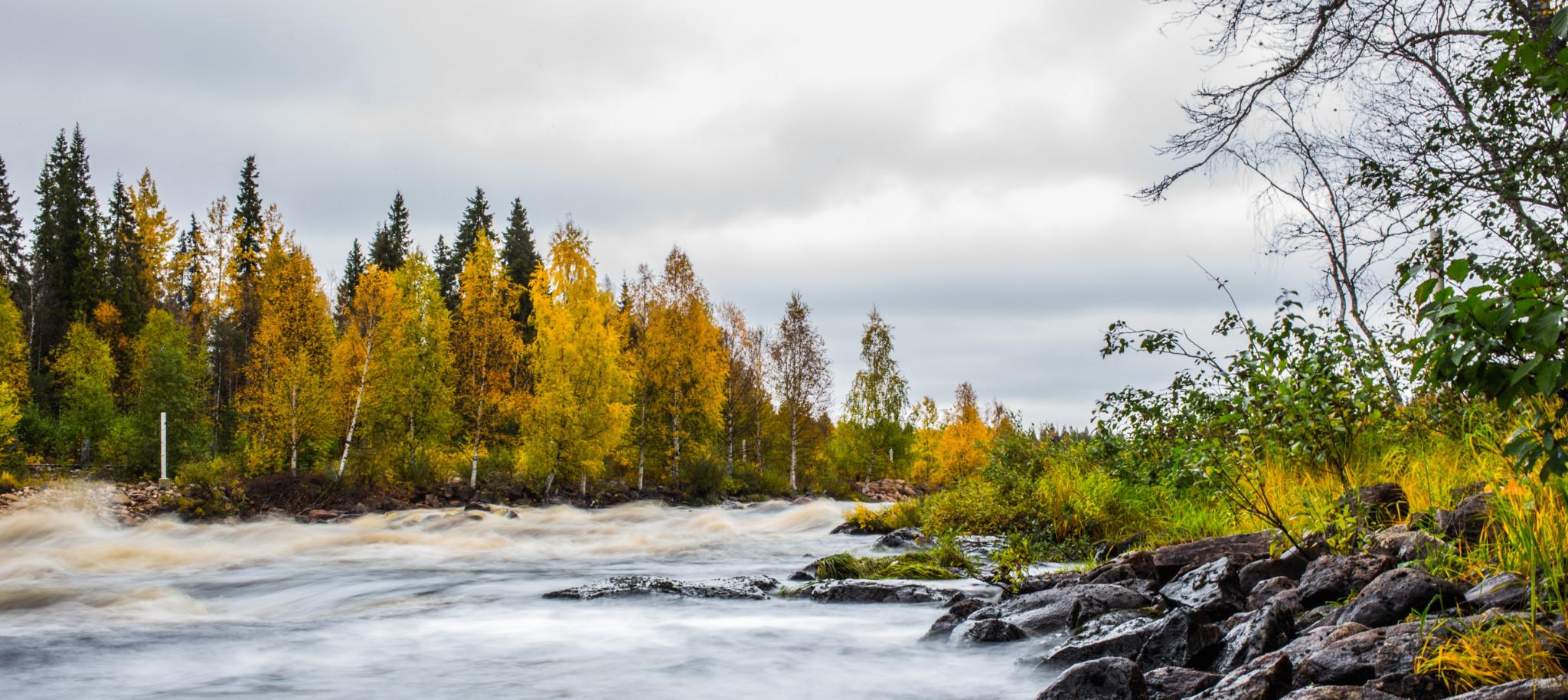 Vikaköngäs, Rovaniemi, in autumn light