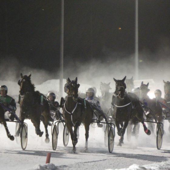 Arctic Horse Race at Mantyvaara race tracks, Rovaniemi, Lapland, Finland