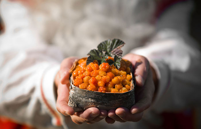 Santa Claus holding a box of cloudberries in Rovaniemi, Lapland, Finland