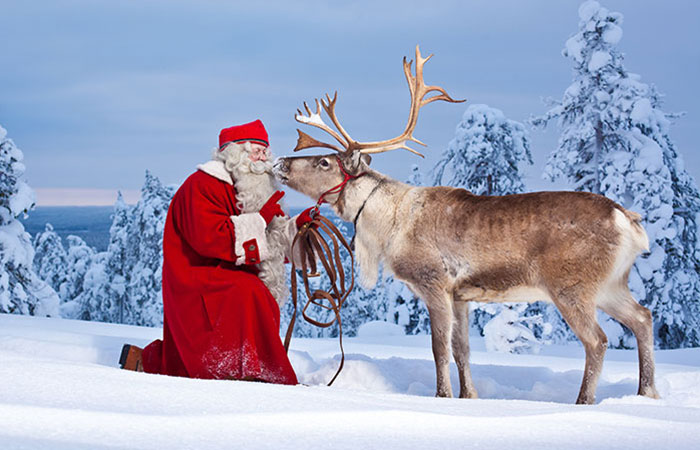 Santa Claus and his reindeer in a snowy forest in Rovaniemi, Lapland, Finland