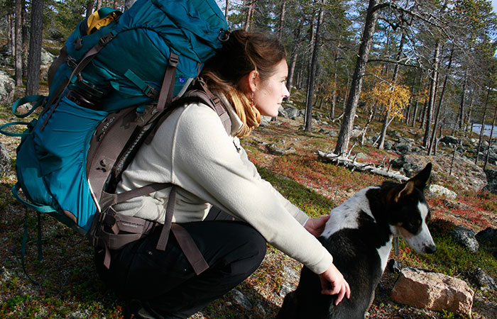 Hiking with huskies in autumn in Rovaniemi, Lapland, Finland