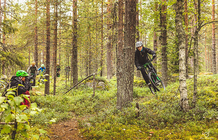 Mountain biking in an autumn forest in Rovaniemi