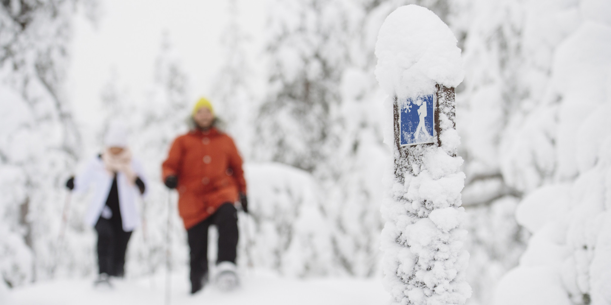 Find travel agents and tour operators - Visit Rovaniemi