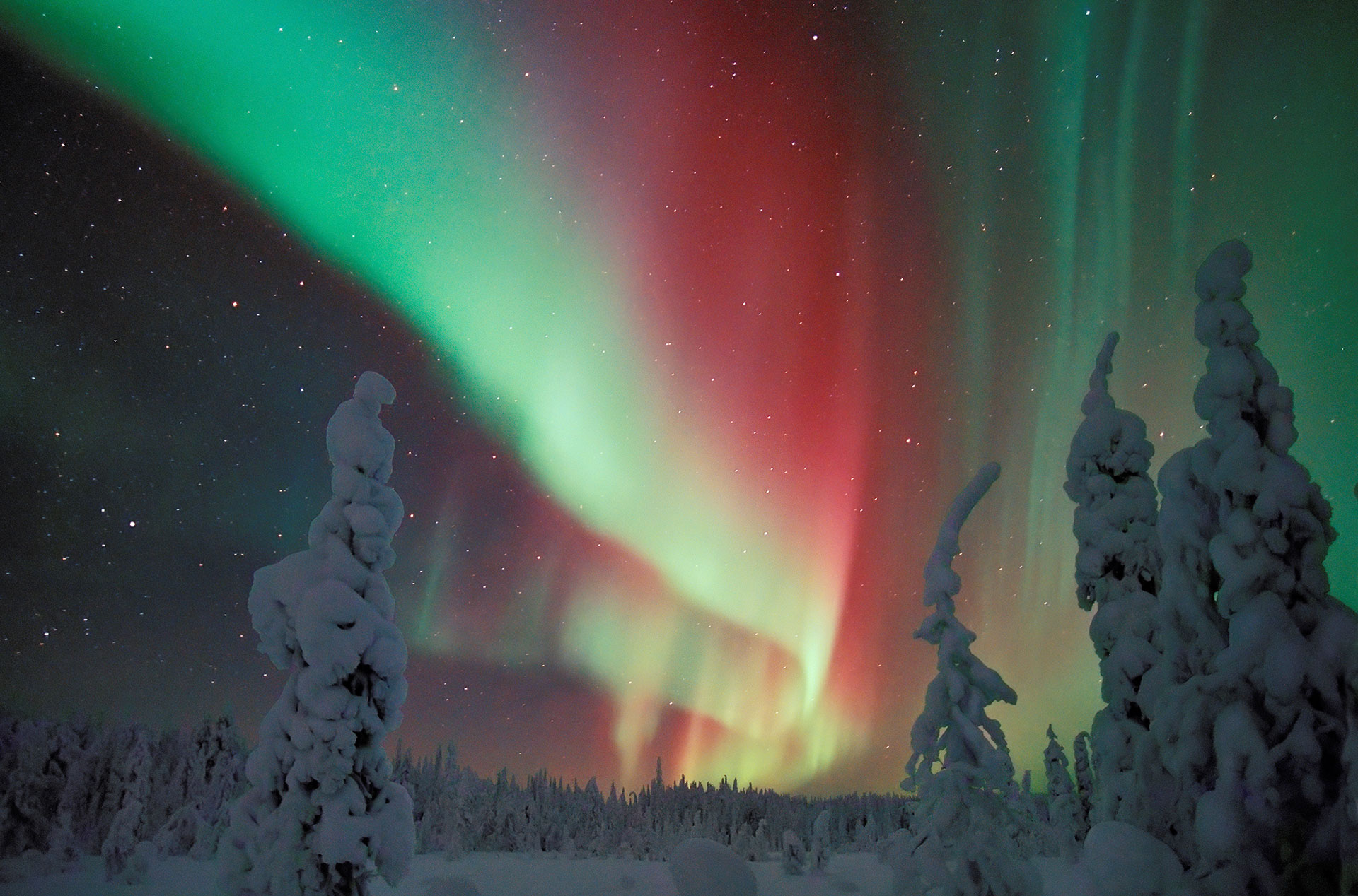 Good ... The Auroras Are Caused By A Fox Running Over The Fells Of Lapland,  Whipping Up Snow With Its Tail And Sending Sparks Up The Northern Sky. Amazing Design
