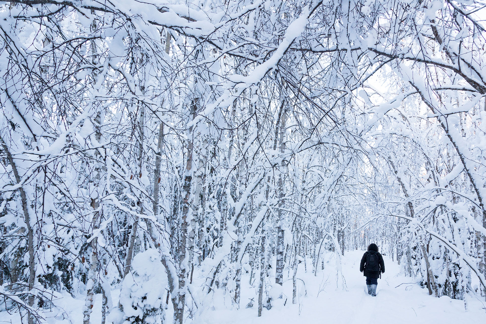 visit-rovaniemi-love-snow-and-ice-web-opt-5.jpg