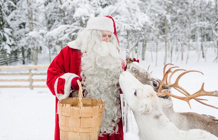 Santa Claus feeding his reindeer in Rovaniemi, Lapland, Finland
