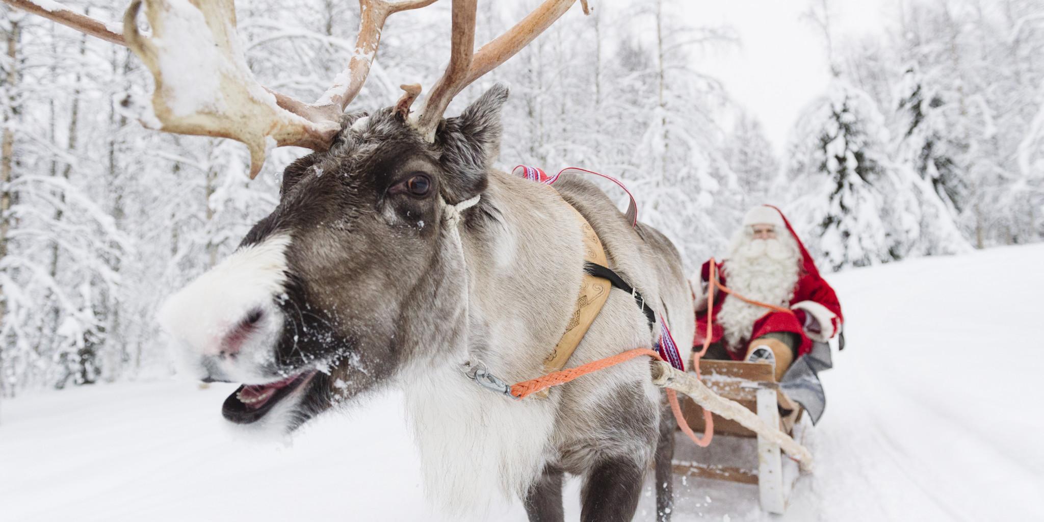 Santa Claus on a reindeer sleigh ride in Rovaniemi, Lapland, Finland