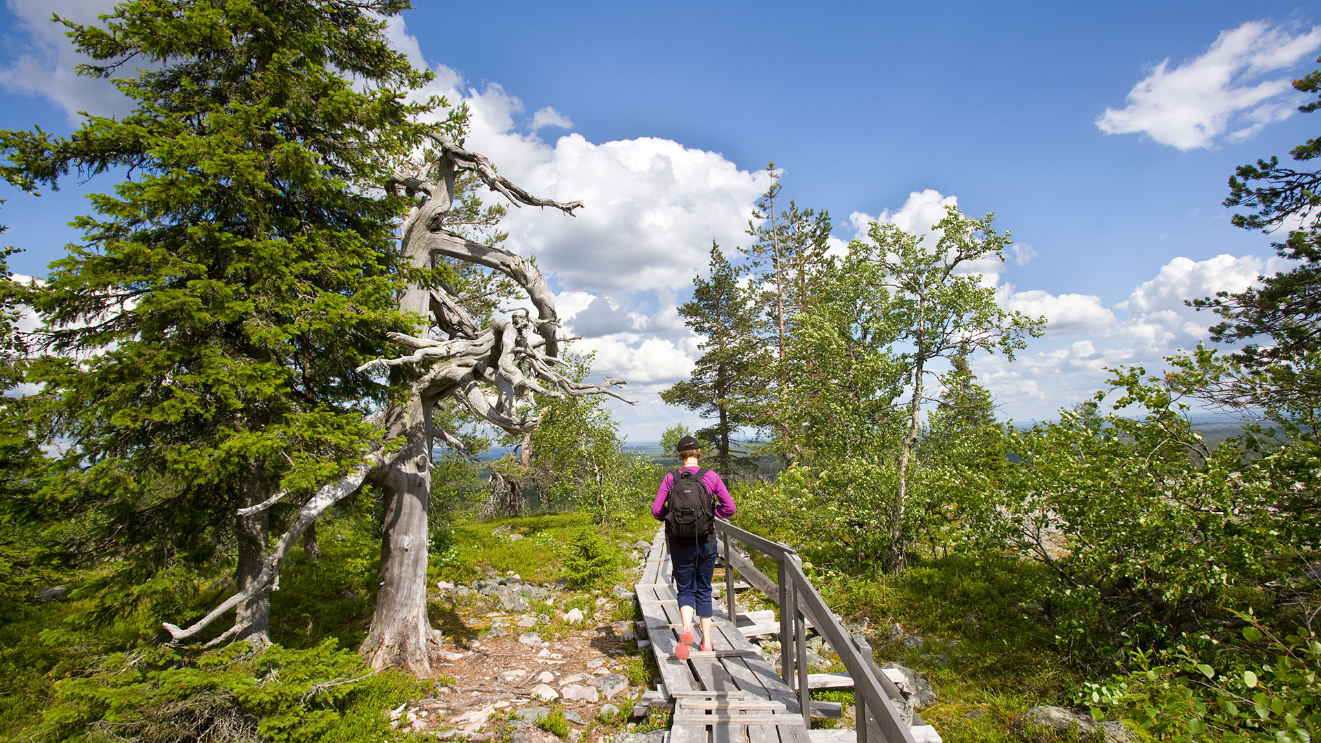 Hiking up the Lampivaara fell to the Amethyst mine in Luosto, close to Rovaniemi, Lapland, Finland.