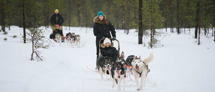 visit-rovaniemi-winter-activities-husky-sled-tour