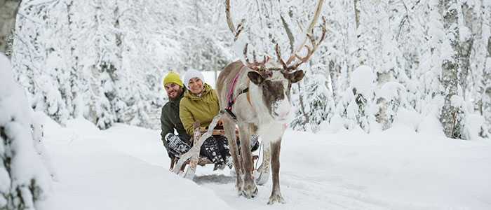 visit-rovaniemi-winter-activities-reindeer-sleigh-ride-couple