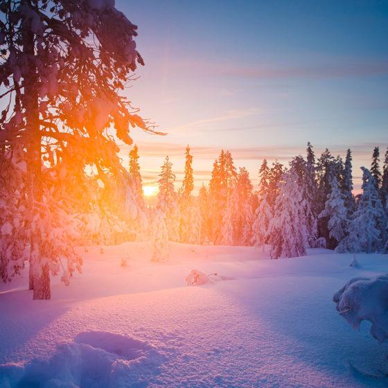 Winter landscape in Rovaniemi, Lapland, Finland